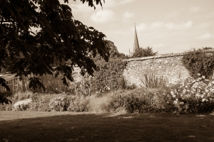Lacock in autumn -2309