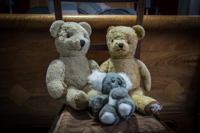 two teddies and a koala