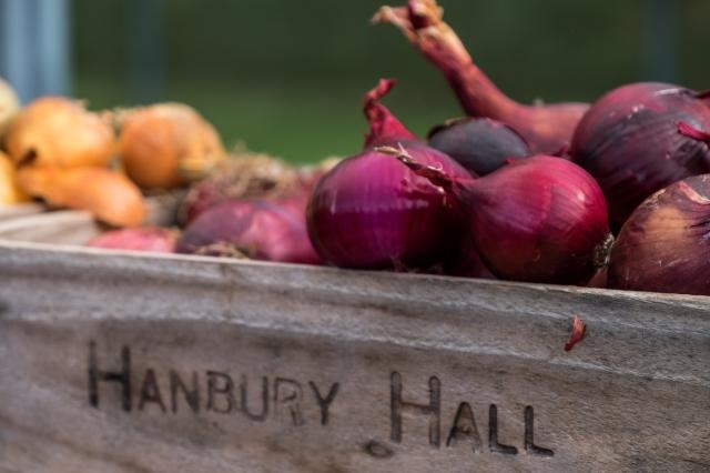 hanbury-hall-apple-day-6054
