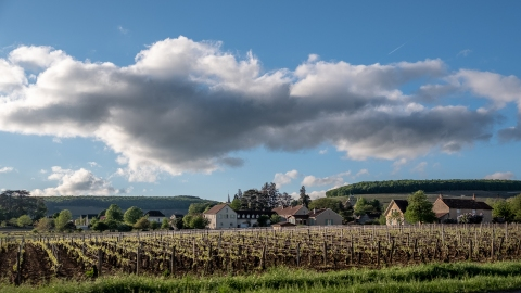 Voiron trip around Beaune 0883